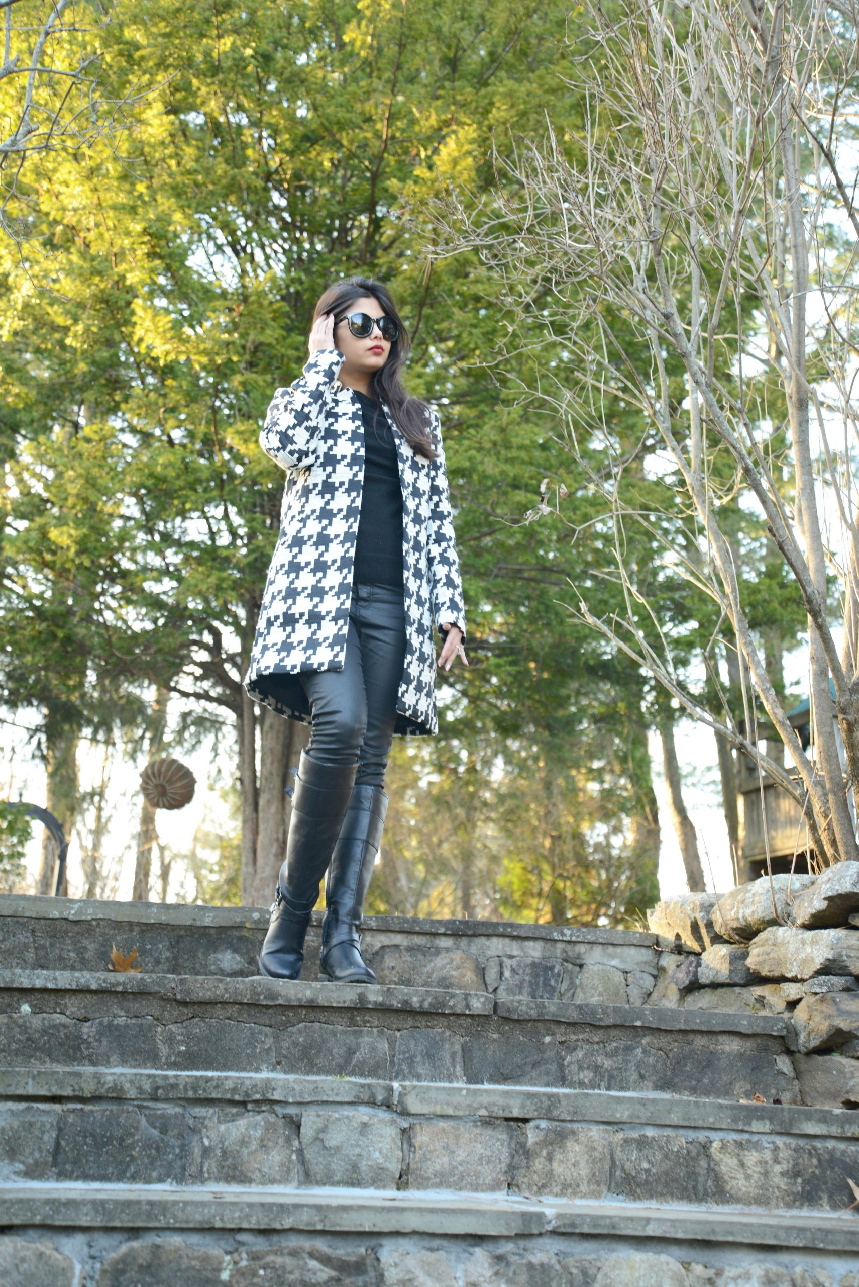 The Houndstooth Story